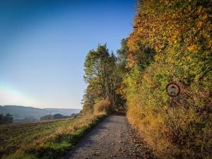 Weg am Hang am Waldrand