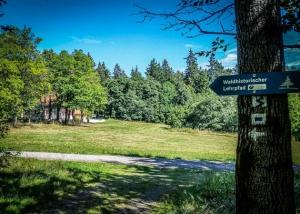 Große Lichtung beim Waldhaus im Steinwald