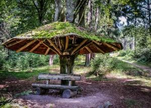 Pilzförmiges Holz-Unterstelldach