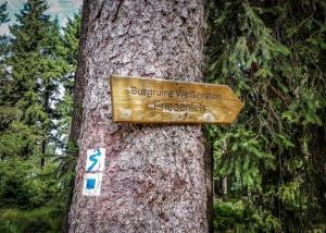 Holz-Wegweiser zur Ruine Weißenstein