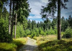Wanderweg über den Bergrücken