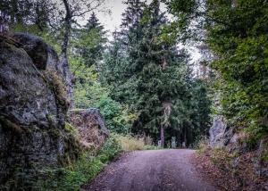 Weg durch Felsentor