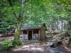 Hütte am Luisentisch am Epprechtstein
