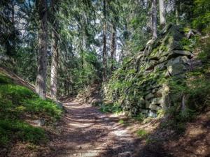 Weg hoch zur Ruine Epprechtstein