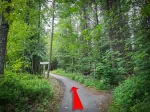 An Gabelung im Wald links