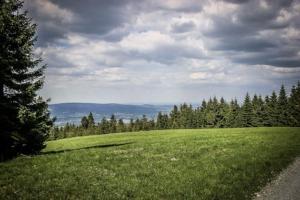1000-Meter Wiese am Schneeberg