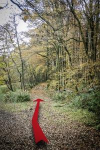 An länglicher Wegkreuzung geradeaus in den Wald