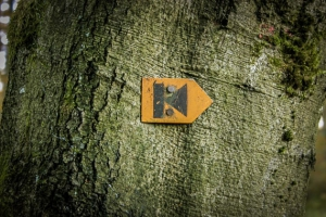 Wegweiser Kolping-K