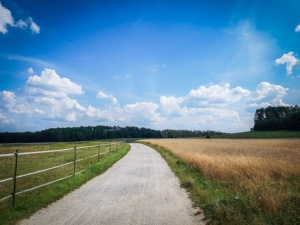 Weg über große Freifläche