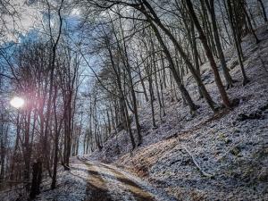 Raureif und Schnee weiter oben am Berg