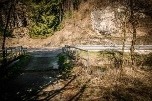 Brücke über die Wiesent