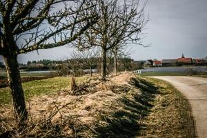 Rückweg in Richtung Stadelhofen