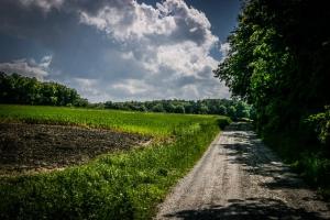 Am Waldrand entlang