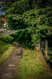 Weg seitlich der Bundesstraße