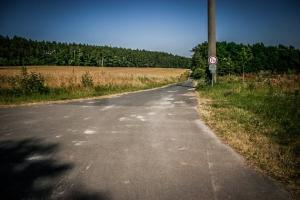 Die Landstraße überqueren