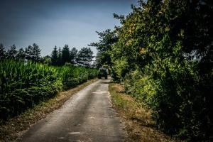 Geteerter Flurweg nach Birkach