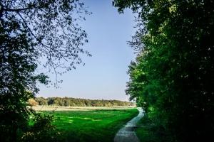 Weg nahe dem Alten Staffelberg