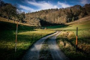 Weiter hinten im Pfauengrund Tal