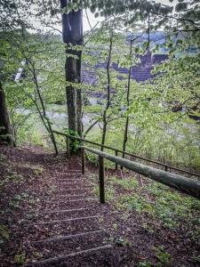 Hölzerne Waldtreppe bergab