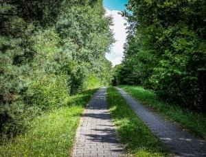 Gepflasterter Fahrweg