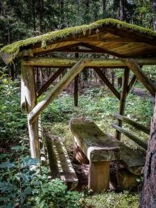 Überwachsene Holzbank-Sitzgruppe