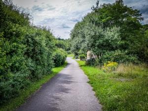 Weg zwischen Hecken bergab