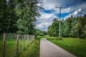 Gepflasterter Weg nach Lußberg durch den Lautergrund