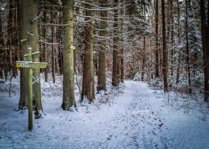Holzwegweiser zum Johannishof