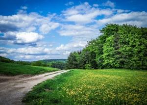 Weg über freie Anhöhe