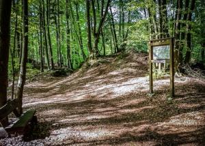 Informationstafel zur Burg Hollenberg