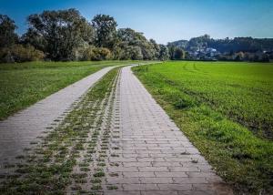 Gepflasterter Weg