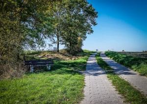 Breiter gepflasterter Weg