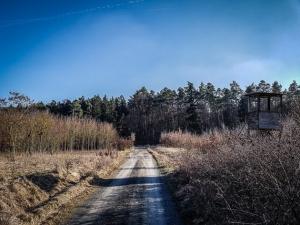 Weg an Baumschonung entlang