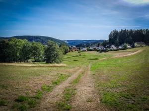 Wiesenweg nach Lauenstein