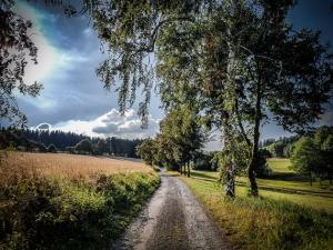 Weg zwischen den Wiesen und Feldern