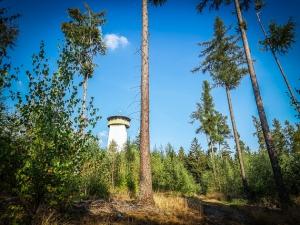 Thüringer Warte im Wald