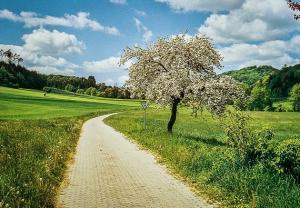 Der Weg nach hinten ins Tal zur Burg Bramberg