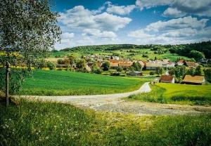 Rückweg zum Ort Bramberg