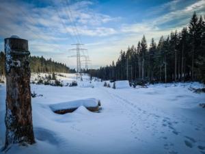 Weg am Rand der Schneise bergab