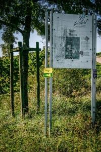 Infotafeln zum Weinwanderweg