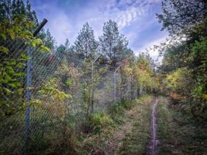 Weg am Zaun entlang