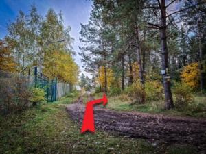 Am offenen Tor nach rechts in den Wald
