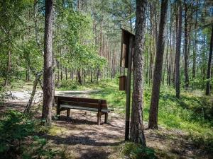 Wieder an der Sitzbank im Wald