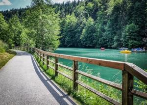 Am Schöngrundsee Pottenstein