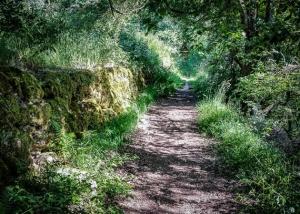 Weg an einer alten Steinmauer entlang