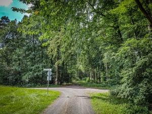 Große Wegkreuzung am Waldrand