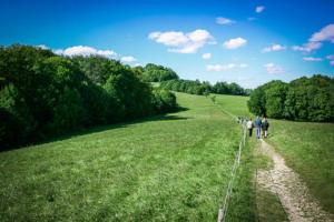 Wiesenweg vom Gügel zur Giechburg