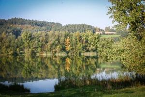 Blick auf den Igelsbachsee