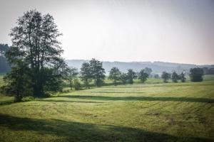 Blick in die weite Landschaft