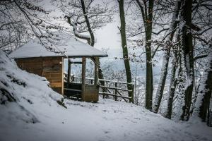 Hütte mit Aussichtspunkt am Heinrichsstein